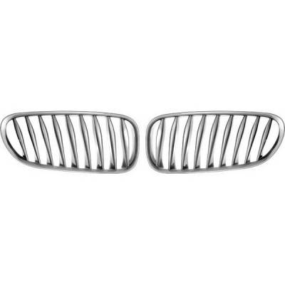 Restyling Ideas - BMW Z4 Restyling Ideas Performance Grille - 72-GB-Z4E8503-CCS