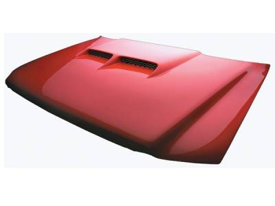 RKSport - Ford F150 RKSport Big Sky Ram Air Hood - 19012000