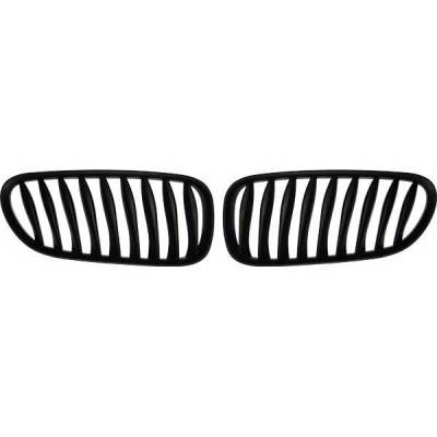 Restyling Ideas - BMW Z4 Restyling Ideas Performance Grille - 72-GB-Z4E8503-BB