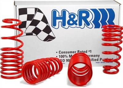 H&R - Ford Mustang H&R H&R Race Springs - 47202