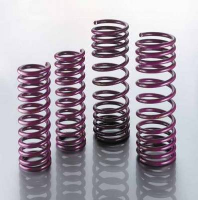 Intrax - Lowering Suspension Springs - 45.1.004
