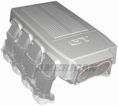 AM Custom - Ford Mustang Engine Plenum Cover - 71000