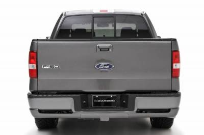 3dCarbon - Ford F150 3dCarbon Rear Lower Skirt - 691564