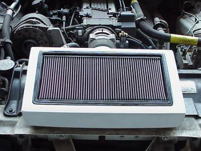 APM - Pontiac Firebird APM Air Intake Box with Filter - 821200