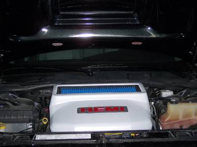 APM. - Dodge Charger APM Air Intake Box with Filter - Style 2 - 821250