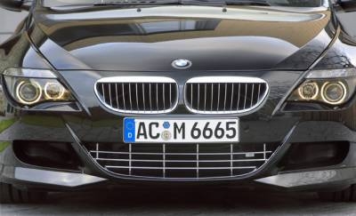 AC Schnitzer - BMW M6 Front grill (Chrome)