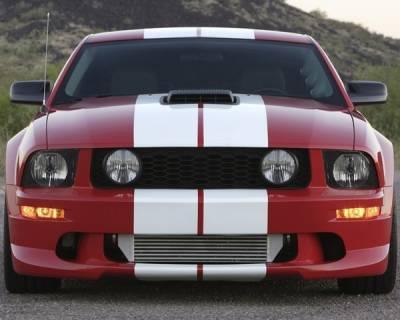 AM Custom - Ford Mustang White Lemans Stripes