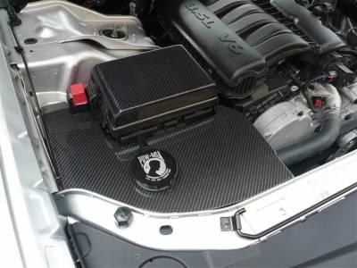 TruFiber - Dodge Charger TruFiber Carbon Fiber LG65 Fuse Box Cover TC010-LG65