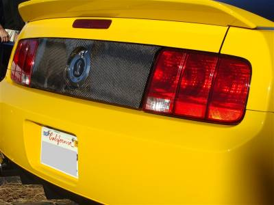 TruFiber - Ford Mustang TruFiber Carbon Fiber LG34 Black Out Blackout Panel TC10024-LG34
