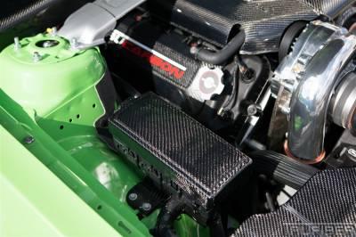 TruFiber - Ford Mustang TruFiber Carbon Fiber LG89 Fuse Box Cover TC10025-LG89
