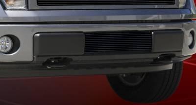 T-Rex - Ford F150 T-Rex Bumper Billet Grille Insert - All Black - 25569B