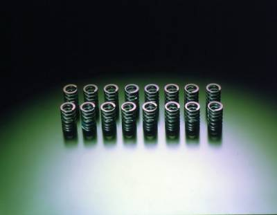 Performance Parts - Engine Internals - HKS - Mitsubishi Eclipse HKS Valve Spring Set - 22001-AM001