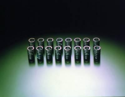 Performance Parts - Engine Internals - HKS - Nissan NX HKS Valve Spring Set - 22001-AN002