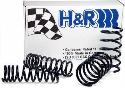 Suspension - Lowering Springs - H&R - H&R Race Lowering Spring 29487-1