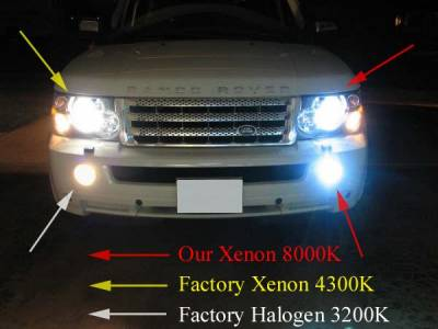 Headlights & Tail Lights - OEM - HID - HID Fog Lights and HID Headlight Upgrade