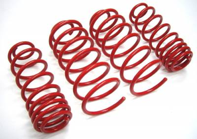 FK Germany - FK Germany Lowering Springs BMW E36