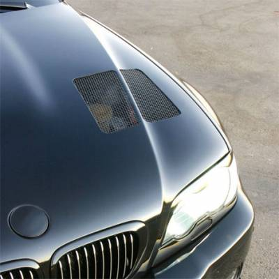 Radenergie - M3 GTR Evolution Aluminum Hood