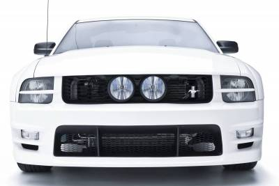 Grilles - Custom Fit Grilles - 3dCarbon - Ford Mustang 3dCarbon E-Style Grille - 691039
