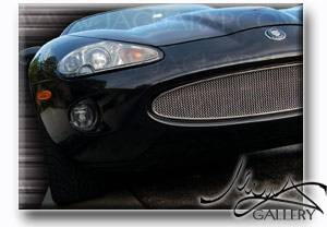 Grilles - Custom Fit Grilles - Custom - Stainless Steel Front Mesh Grille