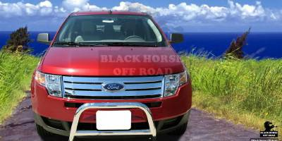 Grilles - Grille Guard - Black Horse - Ford Edge Black Horse Bull Bar Guard