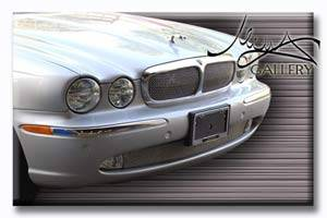 Grilles - Custom Fit Grilles - Custom - Jaguar XJ8 XJR Lower Mesh Grille Insert