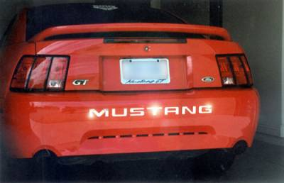 Accessories - Polished Bumper Inserts - Custom - Mustang Stainless Steel Bumper Insert