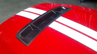 Mustang - Body Kit Accessories - TruFiber - Ford Mustang TruFiber Carbon Fiber OEM Hood Insert Grill Insert TC10025-LG77KR