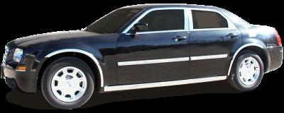 "QAA - 300 Limousine 54"" Stretch QAA Stainless 6pcs Rocker Panel Trim TH45766 - Image 2"